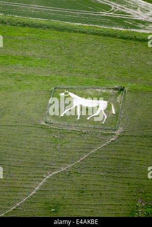 Pewsey new white horse is on Pewsey Hill, Wiltshire. - Stock Photo