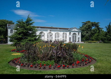 Flowerbed in front of Orangery restaurant, Kew Royal Botanic Gardens, London, UK - Stock Photo