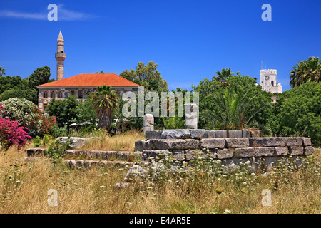 At the archaeological site of Ancient Agora, Kos town, Kos island, Dodecanese, Aegean Sea, Greece.