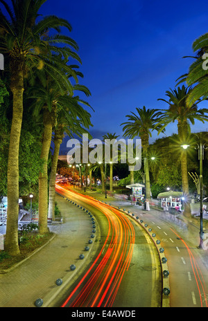 The Palm Trees Avenue, Kos town, Kos island, Dodecanese, Aegean sea, Greece. - Stock Photo