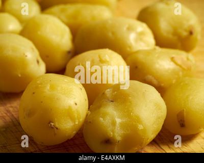 peeled boiled yellow baby potatoes - Stock Photo