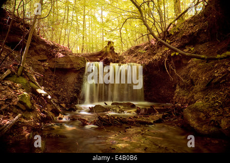 little creek floating around mossy rocks, small waterfall - Stock Photo