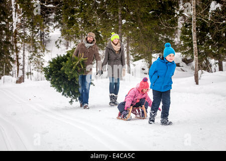 Family with two children carries Christmas tree in snow-covered landscape, Bavaria, Germany - Stock Photo