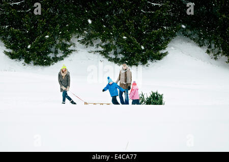 Family with two children pulls Christmas tree in snow-covered landscape, Bavaria, Germany - Stock Photo
