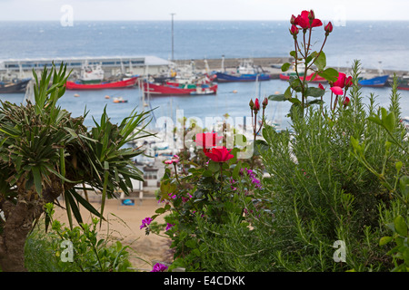 Getaria, Gipuzkoa, Basque Country, Spain. The busy commercial fishing port. - Stock Photo