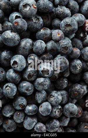 Fresh Organic Raw Blueberries in a Basket Stock Photo