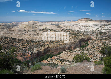 Boulder, Utah - Calf Creek Canyon in Grand Staircase-Escalante National Monument. - Stock Photo