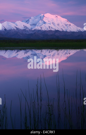 Mt. McKinley, also known as Denali, Denali National Park, Alaska.  - Stock Photo