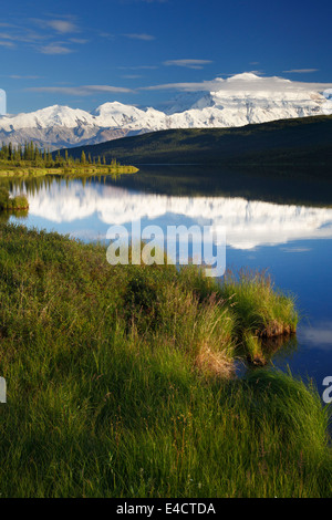 Mt. McKinley, also known as Denali, from Wonder Lake, Denali National Park, Alaska.  - Stock Photo