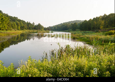 Large pond and woodland in upstate New York - Stock Photo