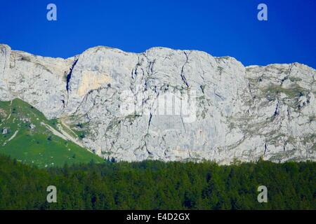 Mountain, Villard de Lans, Vercors, Isère, Rhône-Alpes, France. - Stock Photo