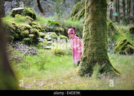 Little girl hiding behind a tree - Stock Photo