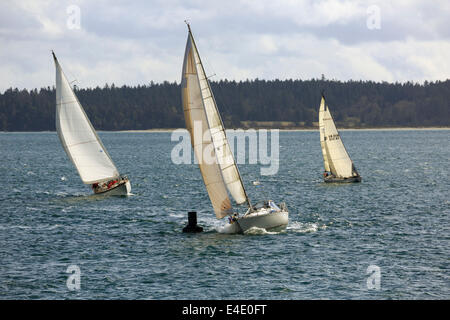 A sailing yacht rounds a buoy in a close sailing race near Sidney, Vancouver island - Stock Photo