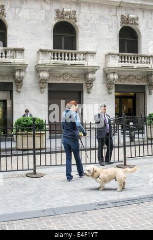 Dog Walking Lower Manhattan