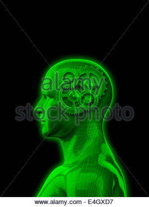Model of man with cogs inside head - Stock Photo