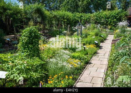 Medicinal plants in Queen's Garden, Kew Palace, Kew Royal Botanic Gardens, London, UK - Stock Photo