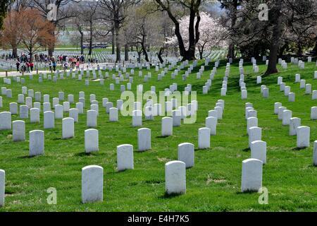 Arlington, Virginia:  Row upon row of  white soldiers' graves at Arlington National Cemetery - Stock Photo