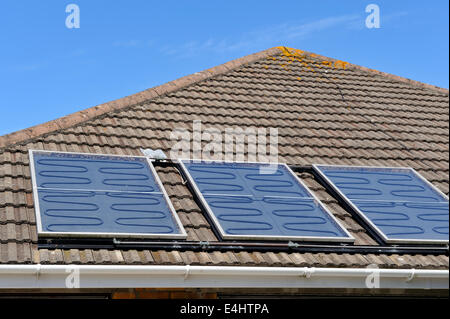 Fat plate solar thermal panels on roof of house for providing hot water, heating, hot water collecting tubes visible, - Stock Photo