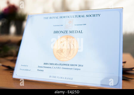 A Royal Horticultural Society bronze medal, awarded at the Chelsea Flower Show 2014 - Stock Photo