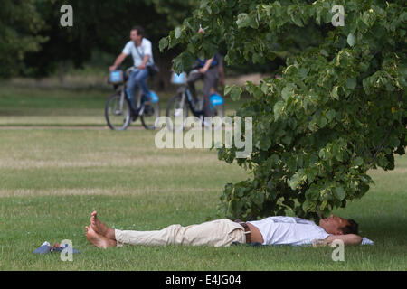 Kensington, London, UK. 13th July, 2014. A man sleeps under a tree in Hyde Park London on a warm day of sunny weather - Stock Photo