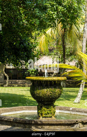 Modern landscaped garden with water feature and astro turf for Shallow garden pond