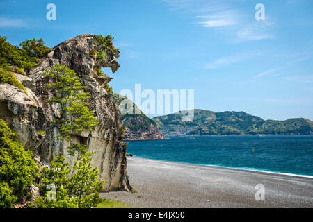 Lion rock (Shishi-iwa) in Kumano, Japan. - Stock Photo