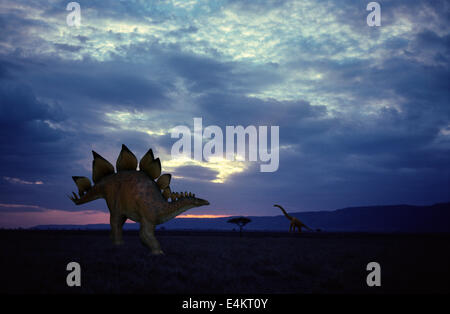Stegosaurus - Stock Photo