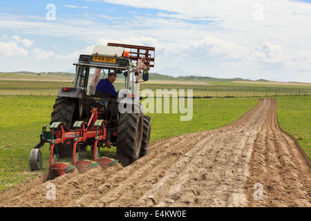 Croft farmer ploughing furrows in a field of traditional country side machair grassland using a tractor pulling - Stock Photo