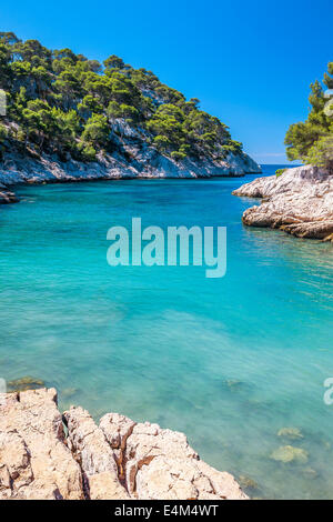 Calanques of Port Pin in Cassis, near Marseille, France - Stock Photo