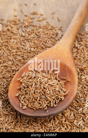 Dried caraway or cumin seeds in wooden spoon - Stock Photo