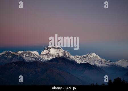 Dhaulagiri Peak (8167m), View from Poon Hill, Ghorepani, Annapurna Circuit Trek, Nepal - Stock Photo