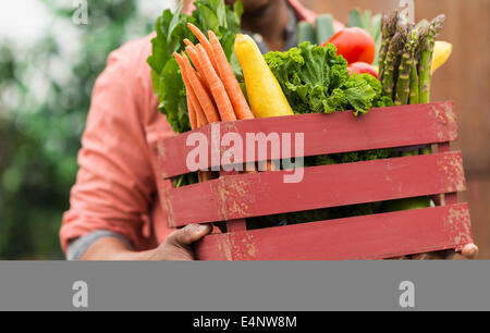 Close up of man carrying crate full of fresh vegetables - Stock Photo