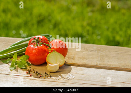 fresh tomatoes leeks onions garlic basil salt pepper red green wooden table outside in the open air sun summer - Stock Photo