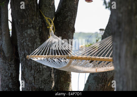 Empty Hammock in the Trees. An empty string hammock hangs between trees near a lake in cottage country north of - Stock Photo