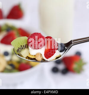 Fruit yogurt with strawberries, banana, raspberries, kiwi and blueberries on a spoon for breakfast - Stock Photo