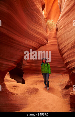 Tourist, eroded sandstone formations and tumbleweed caught high in Rattlesnake Canyon, near Page, Navajo Nation, - Stock Photo
