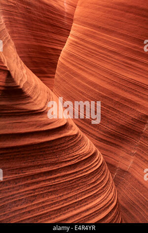 Eroded sandstone formations in Rattlesnake Canyon, near Page, Navajo Nation, Arizona, USA - Stock Photo