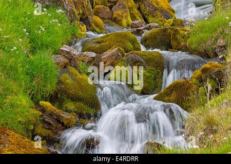 Iceland, scenic, Landschaft in Island, Wasserfall - Stock Photo