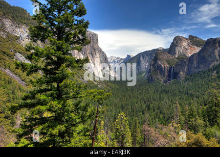Yosemite National Park, Calif. USA - Stock Photo