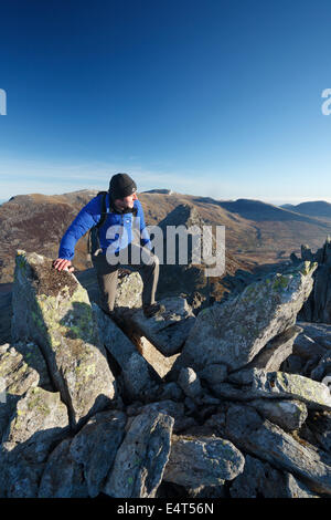 Hillwalker scrambling on Bristly Ridge with Tryfan in the distance. Snowdonia National Park. Conwy. Wales. UK. - Stock Photo