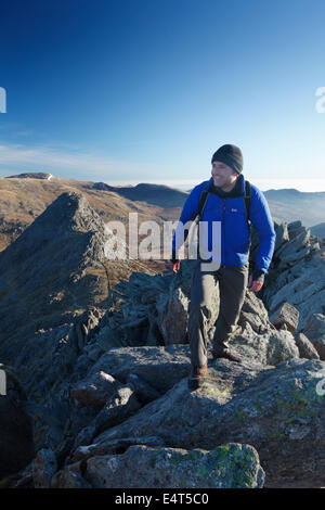 Hillwalker on Bristly Ridge with Tryfan in the Background. Snowdonia National Park. Wales. UK. - Stock Photo