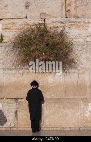 Young Jewish man praying at the Western wall / Wailing Wall, Jerusalem. Israel - Stock Photo