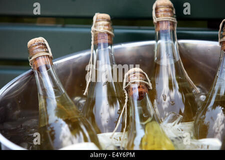 Champagne cooling in an ice bucket - Stock Photo