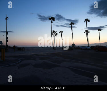 Sunset silhouette with palm trees in Venice Beach, LA, California. - Stock Photo
