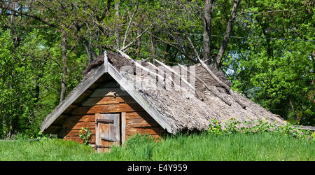 Old house with dried straw roof - Stock Photo