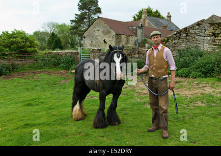 A farm worker holding a horse on a leading rein. - Stock Photo