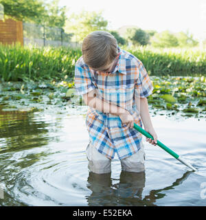 A young boy standing thigh deep in water, using a net to scoop up interesting objects from the water. - Stock Photo