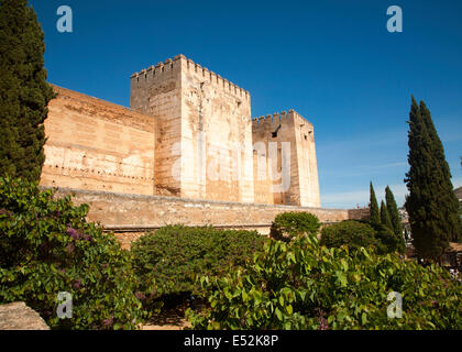 Fortified walls of the Alcazaba castle in the Alhambra complex, Granada, Spain - Stock Photo