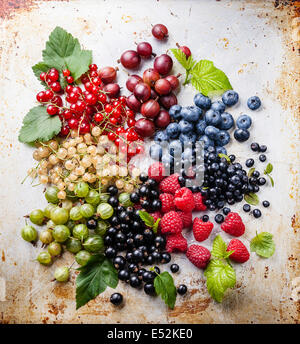 Mix of fresh berries with leaves on textured metal background - Stock Photo