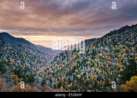 Dawn in the Smoky Mountains National Park, Tennessee, USA. Stock Photo